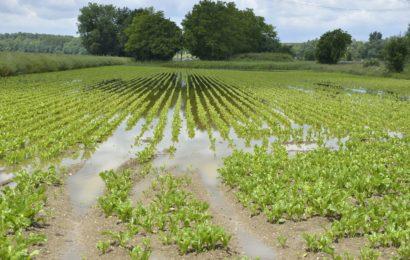 Quelles démarches suite aux inondations ?