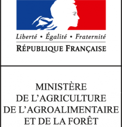 Draaf : Hélène Debernardi nommée directrice régionale adjointe