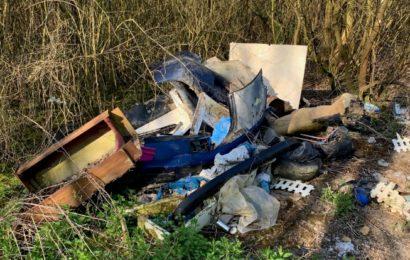 """Opération """"J'aime la Seine propre"""" : 345m3 de déchets ramassés"""