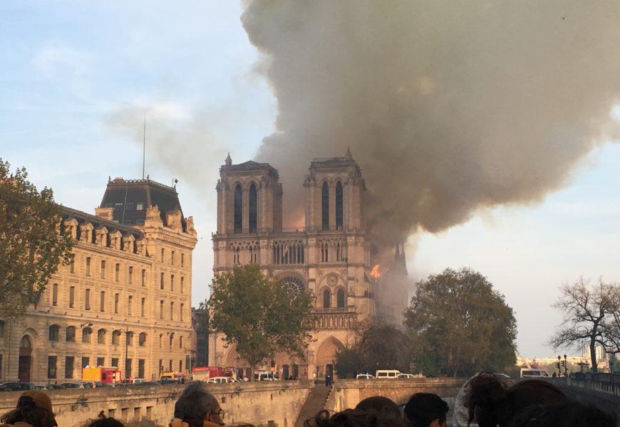 Notre-Dame de Paris : les propriétaires forestiers solidaires