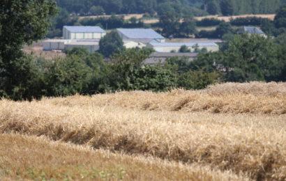 Silos de céréales : opération de contrôles du niveau de sécurité