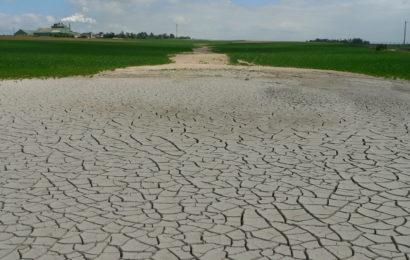 De nouvelles mesures pour aider les agriculteurs touchés par la sécheresse