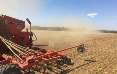 CIPAN Directive Nitrates : les semis ne sont plus obligatoires