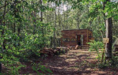 Une cabane dans mes bois [lecture abonné]