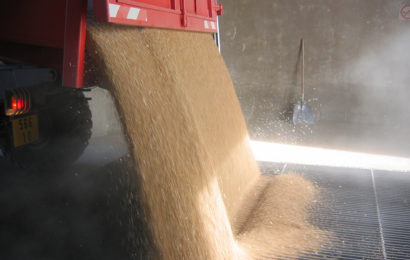 Auto-construire son stockage de grains à la ferme