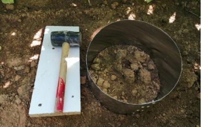 Fertilité des sols : des tests pratiques pour l'évaluer