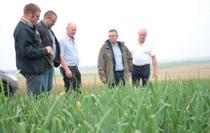 Les agriculteurs appellent à l'aide